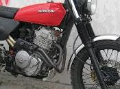 Scrambler Freak Special base Honda