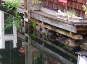 casa sull'acqua (Seattle)
