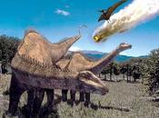Forse scoperto frammento meteorite provocò scomparsa dinosauri