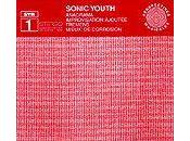 Recensione Anagramma Sonic Youth