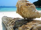 Malaysia+Borneo…Brunei Singapore…very amazing! (1°parte-Kuala Lumpur-Batu Caves-Melaka)