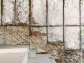 Shots Gallery Bergamo: BARBARA BARTOLONE, Lato Visibile Tempo Milano Arte Expo mostre fotografia