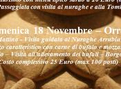 Video Viaggio nella storia Nuraghi Domus Maria