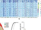 Ecco sequenziamento genoma 1092 individui