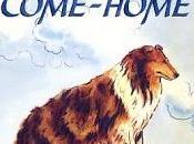 tornare casa Lassie