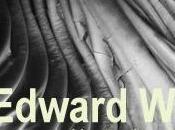 Edward Weston Modena