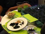 Cibo alternativo sostenibile: insetti alghe