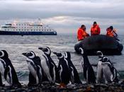 Rotta verso Capo Horn. Patagonia Cruceros Australis