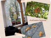 Autumn leaves..