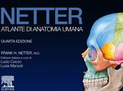 Recensione degli Atlanti Anatomia Umana Netter Sobotta iPad Android