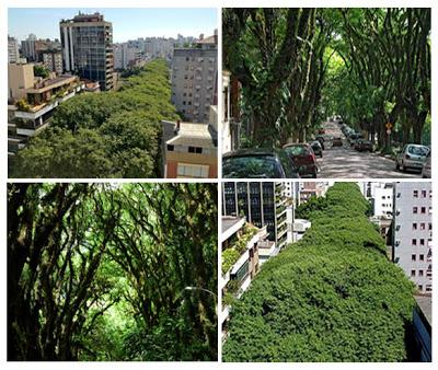 Verde urbano nel mondo paperblog - Giardino verticale madrid ...