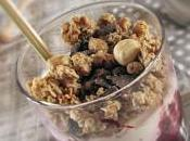 Semifreddo allo yogurt, frutti bosco muesli