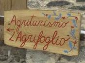 Aggiungi posto tavola: Agriturismo L'Agrifoglio Limone Piemonte (CN)
