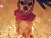 Natale stalker natalizi