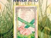 Anteprima: L'Oracolo della Strega Tradizionale Amanda Stregamanda Pitto