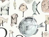 Alfabeto marino