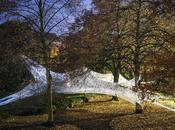 Scultura organica paesaggio Site-specific organic sculture