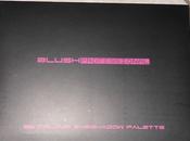 Palette BlushProfessional