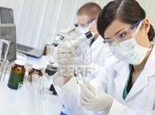 Staminali riprogrammate combattono Aids cellule tumorali