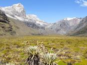 Trekking Colombia, terra ospitale meravigliosa