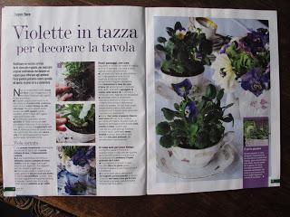 Violette in stile vittoriano casa in fiore di gennaio - Casa stile vittoriano ...