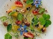 fiori commestibili gastronomia_ nuovo commercio