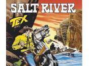 #627 Salt River (Boselli, Andreucci)