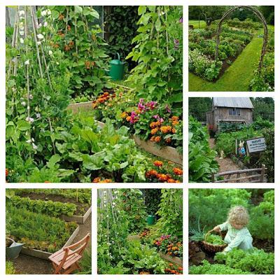 Nell 39 orto e in giardino i lavori di febbraio paperblog - Lavori in giardino ...