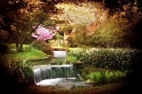 La nostra ninfa tra i primi 10 giardini pi belli al mondo - I giardini di ninfa ...