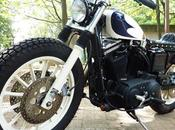Harley 2001 SP-15 Hidemotorcycle