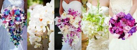 bouquet sposa orchidee