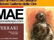 Renzo Ferrari, Opere carta 1960 1984: Piero Giudice Edizioni Galleria delle Milano