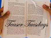 Teaser Tuesday 2013