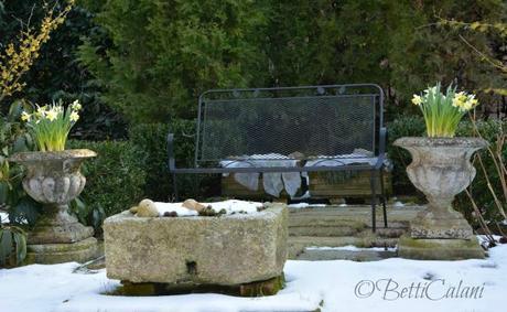Winter garden giardino degli hamamelis paperblog for Vasca pesci rossi giardino