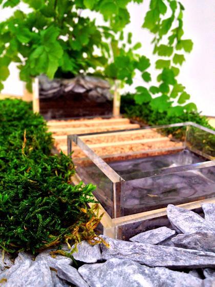 Fiera di pordenone 2 10 marzo 34 edizione orto giardino for Fiera di pordenone