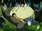 vicino Totoro