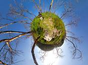Italia 2013: rapporto Ocse sulle performance ambientali