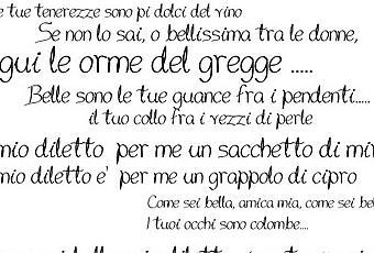 Frasi Matrimonio Cantico Dei Cantici.Monica E Michele E Il Cantico Dei Cantici Paperblog