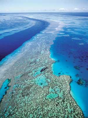 Una vista aerea del Fiji Great Sea Reef