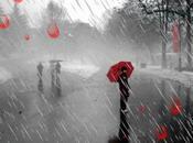 Piove sulle Palme