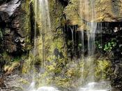 Acqua pubblica, Salini dribbla commissione, cancella scelta consiglio provinciale l'opposizione prepara l'emendamento: l'acqua pubblica