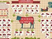 Come scegliere taglio manzo choose your cuts beef