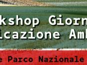 workshop Giornalismo Comunicazione Ambientale