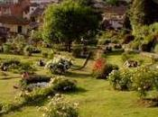 Giardino delle Rose Iris) Firenze