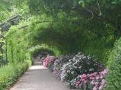 Bardini, giardino dell'eterna primavera