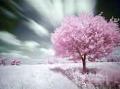 Nuvole sole Spazio Poesia