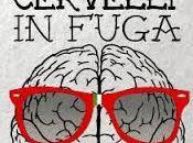 "Fuga cervelli: l'ultima ""furbata"" made germany"