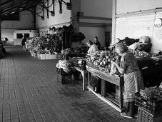 mercato Bolhão