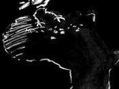 Françafrique Libro Bianco della Difesa 2013 /Pioggia critiche nessuna risposta