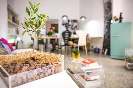 vendita design online i vasi giardino in plexiglass